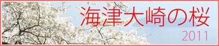 sakura-info2011.png
