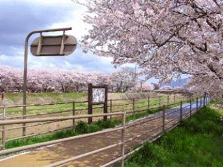 kusatugawa060415b3.jpg